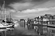 Ben and Raisa Gertsberg - Veiw Of Marina In Victoria British Columbia Black And White