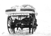 Ben and Raisa Gertsberg - Old Wagon Monochrome