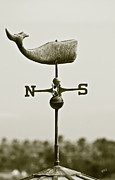 Ben and Raisa Gertsberg - Whale Weathervane In Sepia